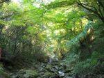 犬鳴山渓谷