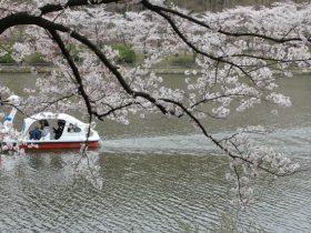 高松公園・高松の池