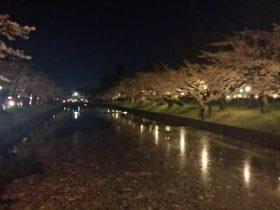 鶴岡公園・鶴ヶ岡城
