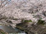 三室山・竜田公園